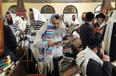 הרב דוד שדה מביא גלריית תמונות מרגשת מהנעשה הבוקר הזה (ערב החג) – חלק ב'