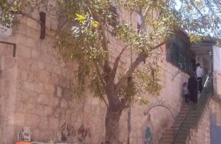 """ר' ישראל מאיר ברנר שליט""""א מבקש מהציבור לבוא ולחזק את מתפללי ביהכ""""נ"""