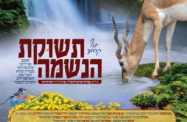"""הזמר והיוצר הרב יוסף קרדונר בסינגל חדש """"שירת הנשמה"""""""
