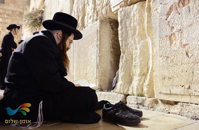 בינינו… משיח… בית המקדש… זה מה שחסר לנו?