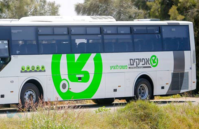 """בשורה לתושבי ירושלים: חברת אפיקים מתגברת את הקו מירושלים לנתב""""ג"""