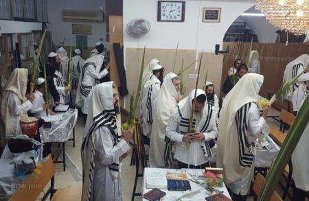 """הושענא רבא בקהילת """"נחלי נצח"""" בראשות הרה""""ח ר' שמואל שטרן שליט""""א"""