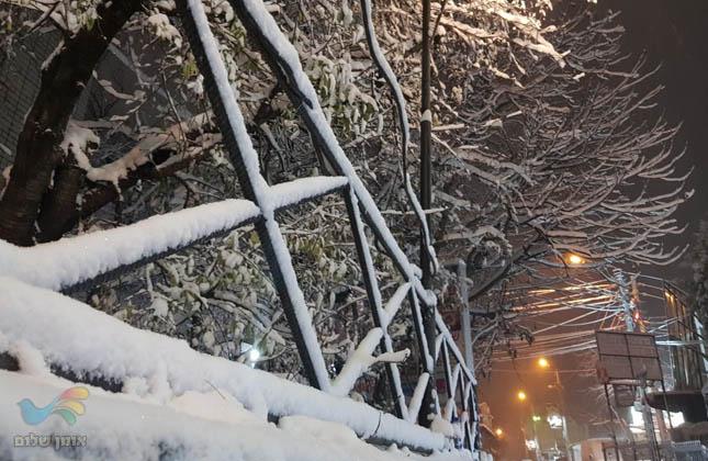 אומן בלבן שלג באומן