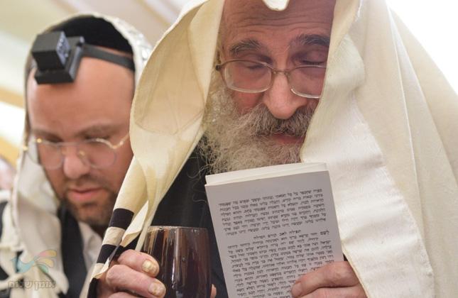 """גדולי חסידי ברסלב השתתפו בשמחת הברית לנין הרה""""צ ר' לוי יצחק בנדר זצ""""ל"""